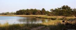 Панорама пруда