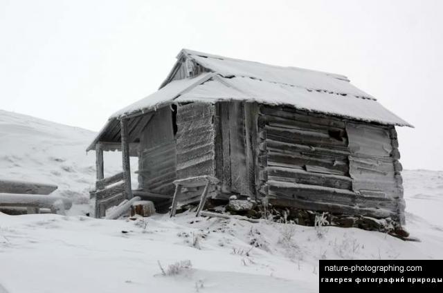 Снегом кутерьма песня